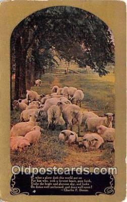 yan050038 - Charles F Deems  Postcard Post Card