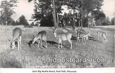 yan060010 - Park Falls, Wis, USA Louis Big Muski Resort, Northwoods Deer Postcard Post Card