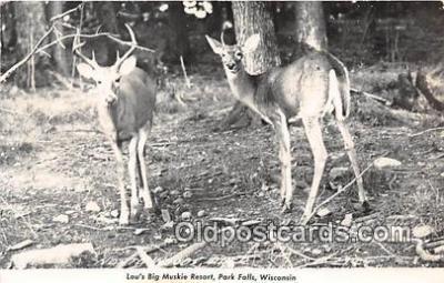 yan060022 - Park Falls, Wis, USA Louis Big Muski Resort, Northwoods Deer Postcard Post Card