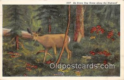 yan060031 - Postcard Post Card