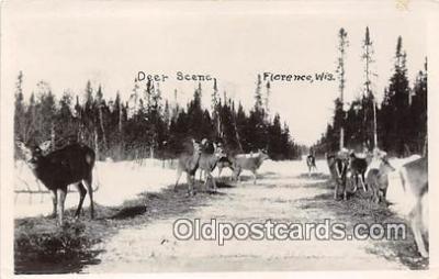 yan060114 - Florence, Wisconsin, USA Deer Postcard Post Card