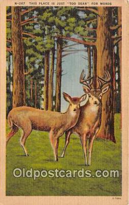 yan060136 - Too Dear Postcard Post Card