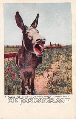 yan070007 - Native Son Laughing Postcard Post Card