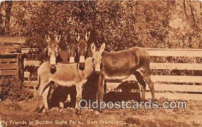 yan070066 - San Francisco, CA, USA Golden Gate Park Postcard Post Card