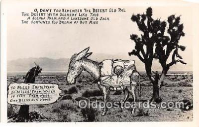yan070087 - Postcard Post Card
