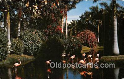 yan090024 - Sarasota, FL, USA  Postcard Post Card