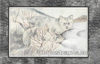 yan100010 - Harvey Arctic Fox Postcard Post Card