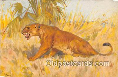 yan150005 - Postcard Post Card