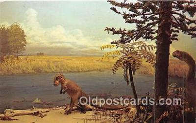 yan150022 - Photo by Erland Preece Sandbar Cemetery Postcard Post Card
