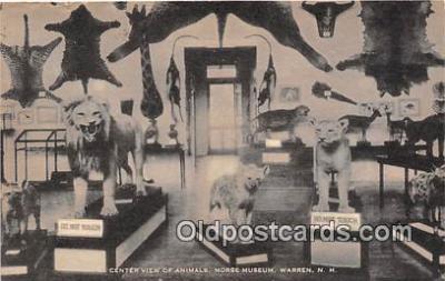 yan150032 - Warren, NH, USA Morse Museum Postcard Post Card