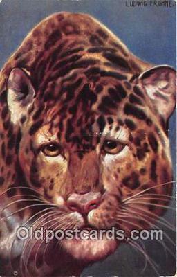 yan150042 - Ludwic Fromme  Postcard Post Card