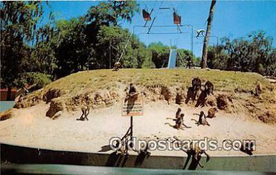yan190020 - Color by CH Ruth Monkey Island Postcard Post Card
