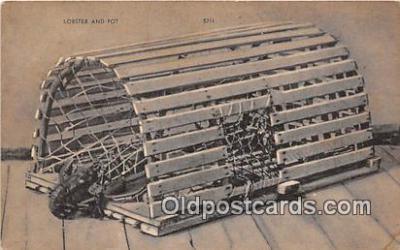 yan230002 - Lobster & Pot Postcard Post Card