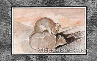 yan230029 - House Mouse Postcard Post Card
