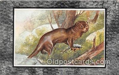 yan230030 - Otter Postcard Post Card