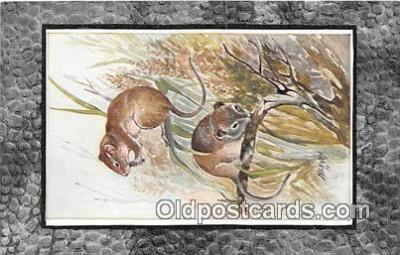 yan230043 - Field Mouse Postcard Post Card