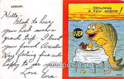 yan230052 - Hesperia, Mich, USA Rader Dunn Resort Postcard Post Card