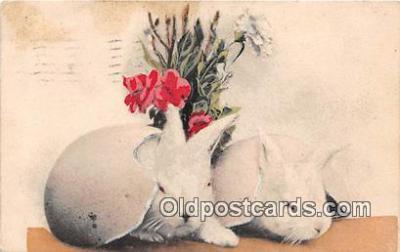 yan240024 - Postcard Post Card