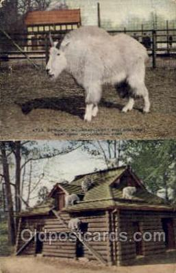 zoo001011 - Rocky Mountain Goat & Shelter, New York Zoological Park New York, USA Postcard Post Cards Old Vintage Antique