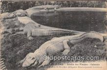 yan000028 - Paris Jardin des Plates Caimans Postcard Post Card
