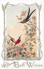 yan010087 - Humming Bird Postcard Post Card