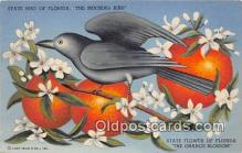 yan010109 - Florida, USA Mocking Bird Postcard Post Card