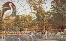 yan010134 - New York Zoological Park, USA Flying Cage Postcard Post Card