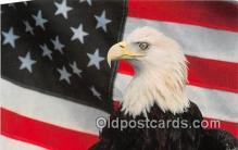 yan010195 - Washington DC, USA Bald Eagle Postcard Post Card