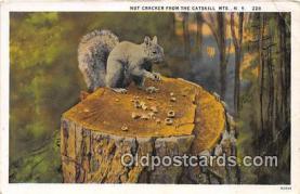 yan020006 - Catskill Mountains, NY, USA Nut Cracker Postcard Post Card