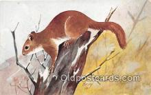 yan020023 - Artist Harvey Red Squirrel Postcard Post Card