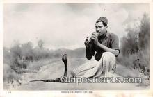 yan040001 - Ceylon Snake Charmer Postcard Post Card