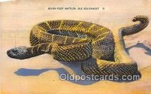 yan040008 - Ole Southwest Seven Foot Rattler Postcard Post Card