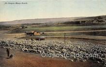 yan050013 - Oregon, USA Oregon Sheep Ranch Postcard Post Card