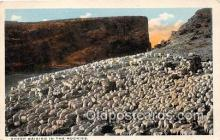 yan050014 - Rockies Sheep Raising Postcard Post Card