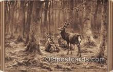 yan060019 - Marie Rosa Bonheur Deer In Forest Postcard Post Card