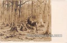 yan060038 - Metropolitan Museum of Art Deer in the Forest Postcard Post Card