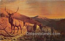 yan060062 - Great Falls, Montana, USA Bull Elk Postcard Post Card