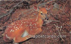 yan060089 - Numurkah  Postcard Post Card