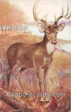 yan060129 - Artist Harvey Virginia Deer Postcard Post Card
