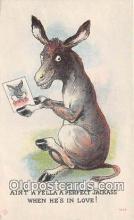 yan070024 - Jackass Postcard Post Card