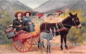 yan070033 - Burro Postcard Post Card