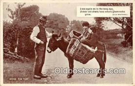 yan070085 - Eva Brennan  Postcard Post Card