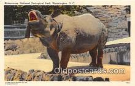 yan130009 - Washington DC, USA Rhinoceros, National Zoological Park Postcard Post Card