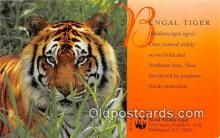 yan150007 - Washington DC, USA Bengal Tiger, World Wildlife Fund Postcard Post Card