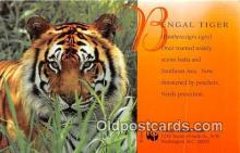 yan150020 - Washington DC, USA Bengal Tiger, World Wildlife Fund Postcard Post Card