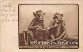 yan190014 - Postcard Post Card