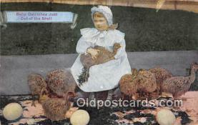 yan210042 - Baby Ostriches Postcard Post Card