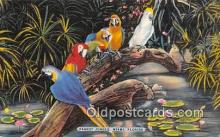 yan220009 - Miami, FL, USA Parrot Jungle Postcard Post Card