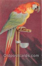 yan220043 - Postcard Post Card