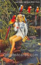 yan220053 - Miami, FL, USA Parrot Jungle, Red Road Postcard Post Card